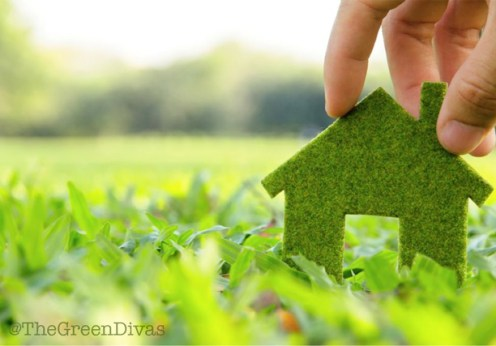 eco-friendly landscaping on the green divas