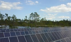 cox enterprises solar farm - cox conserves
