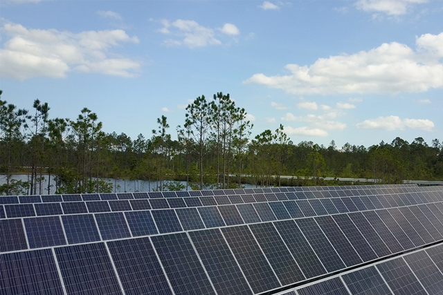 Cox conserves - sustainability initiatives - southern solar farm project