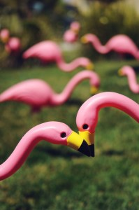 lawns post with pink flamingos