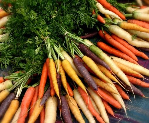 organic-carrots1