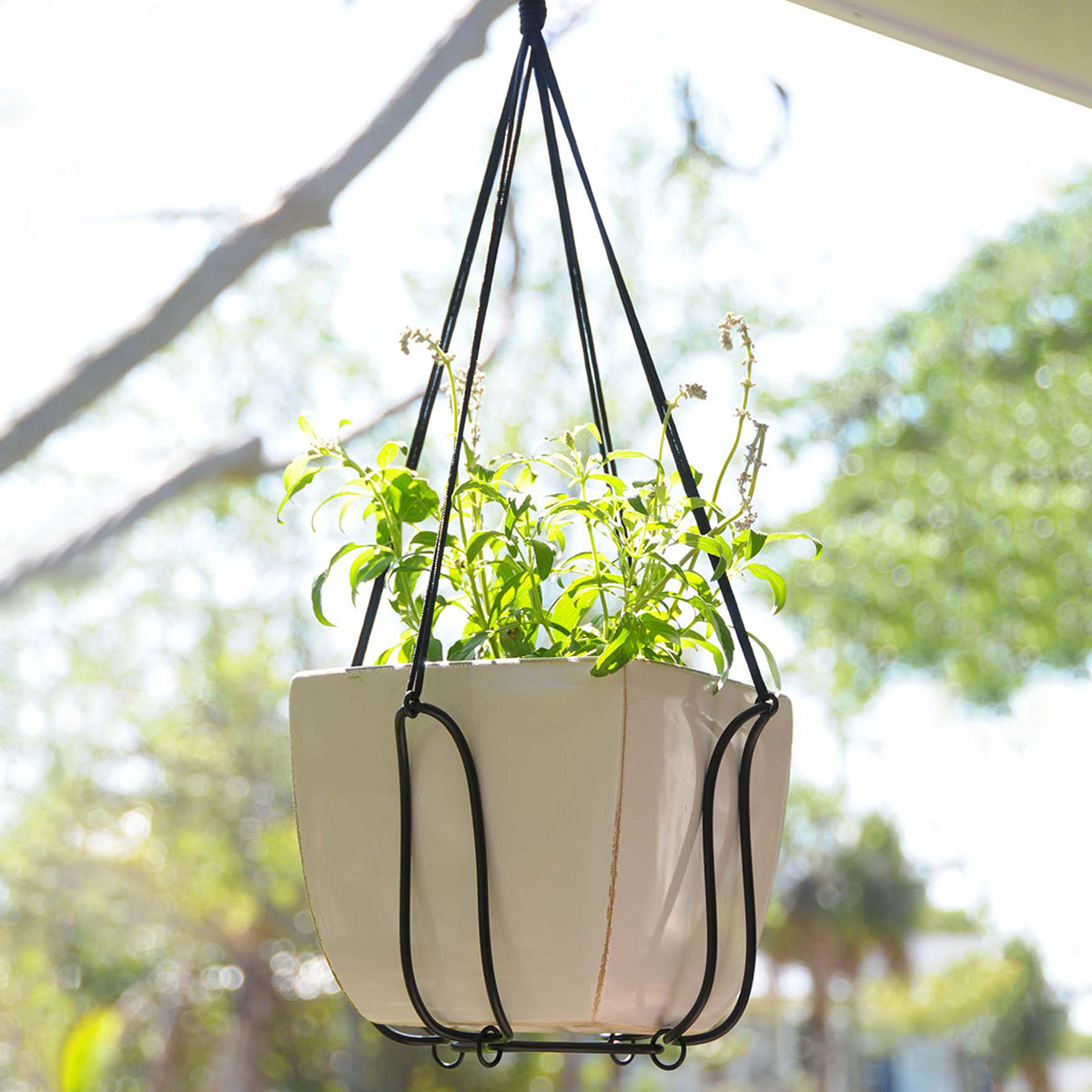 Indoor Wall Mounted Plant Holders Adjustable Plant Hanger Turns Almost Any Pot Into A