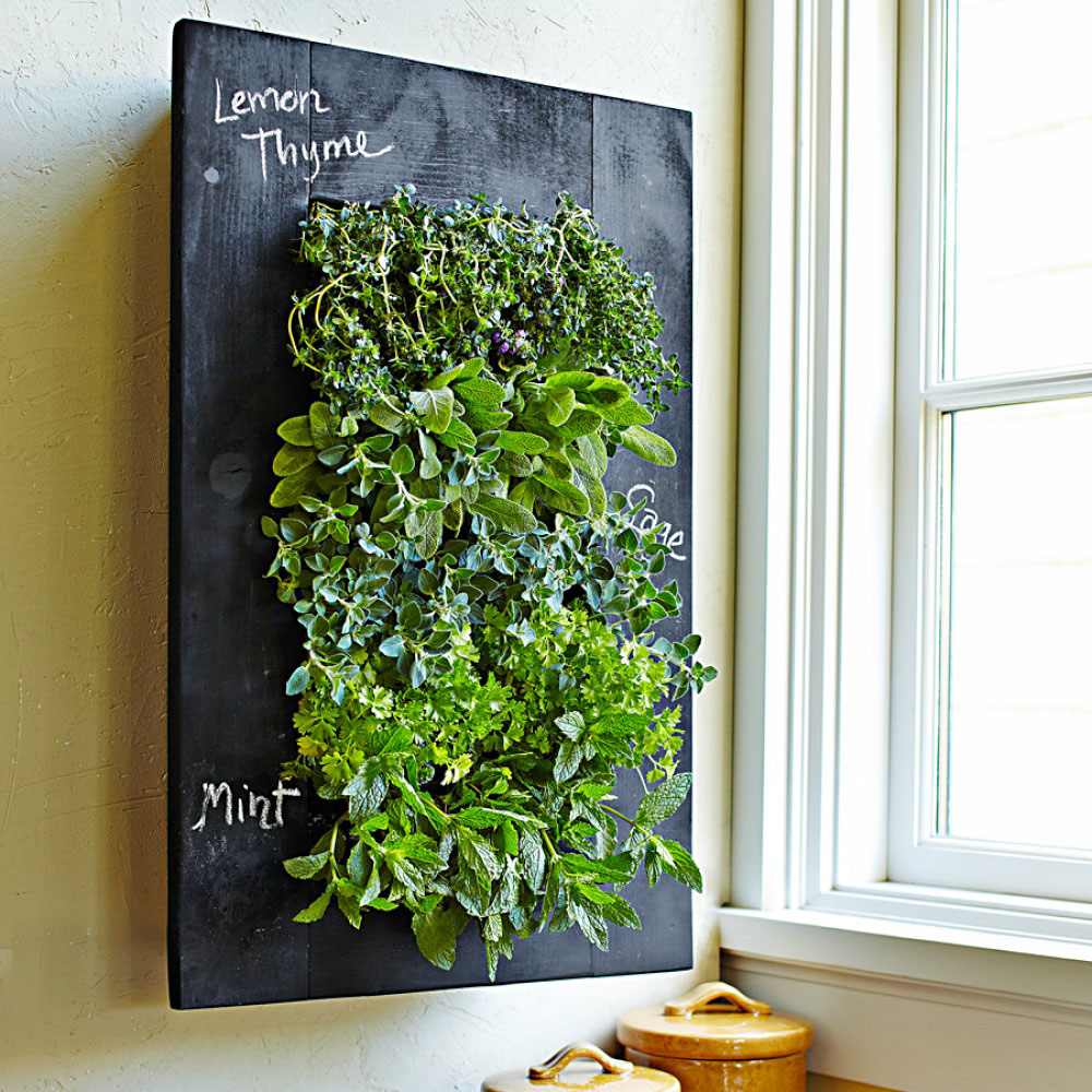 Colander Chalkboard Vertical Wall Planter - The Green Head