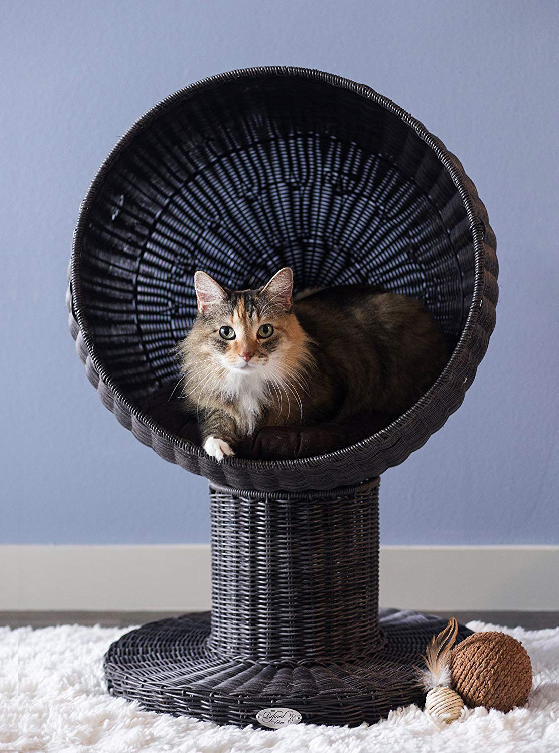 All Modern Furniture Kitty Ball Cat Bed