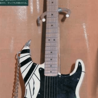Launch of the Frankenstrat project
