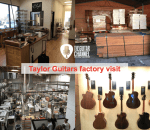 Taylor Guitars factory tour in video