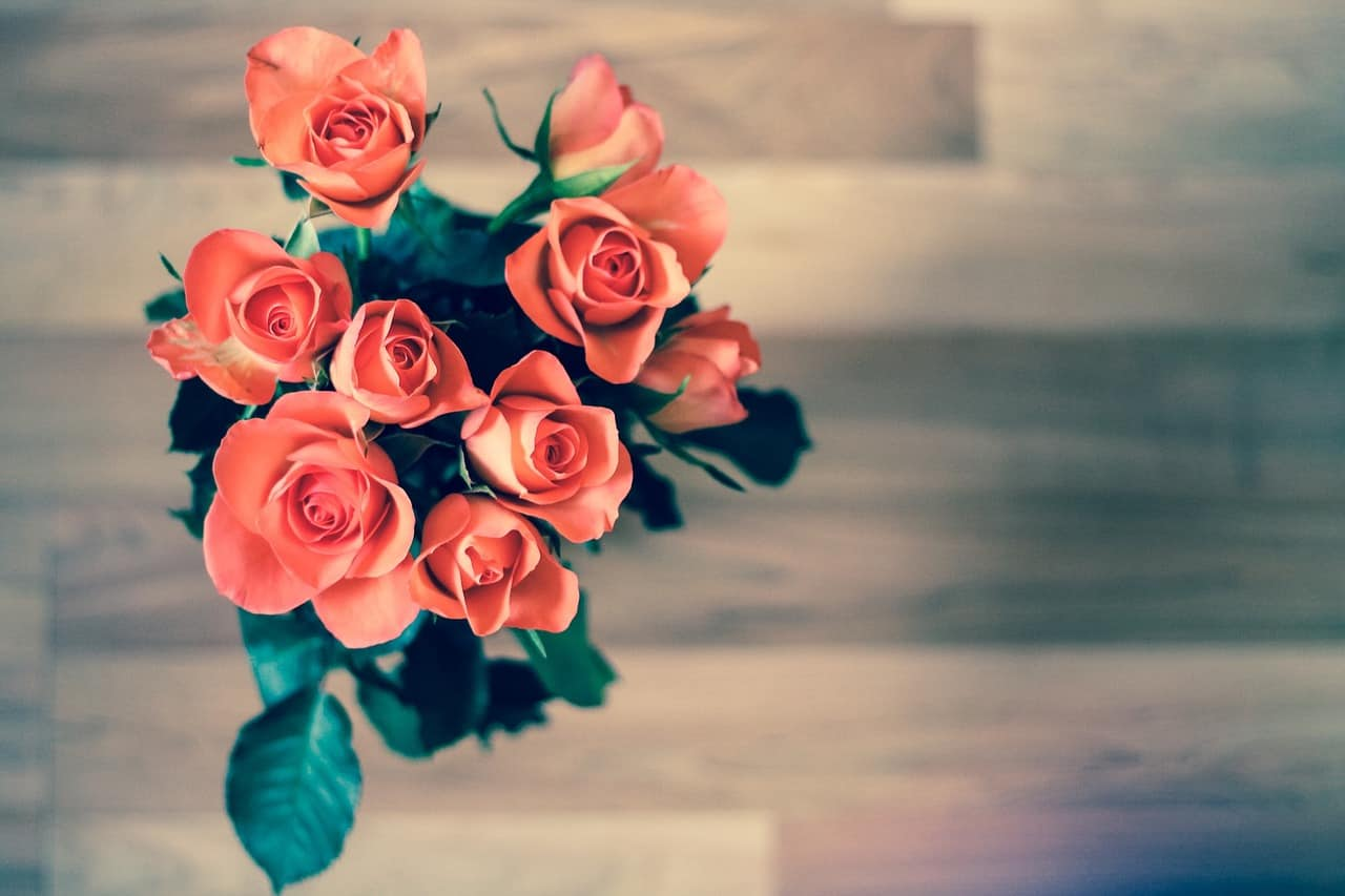 Valentines Day Roses | The Guy Blog
