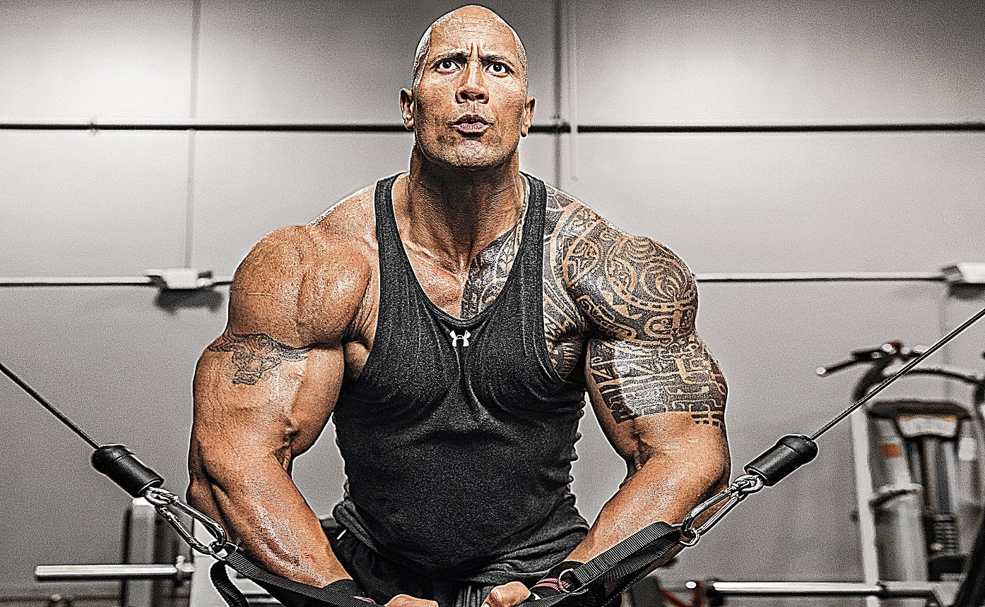 The Rock Gym Beast | The Guy Blog