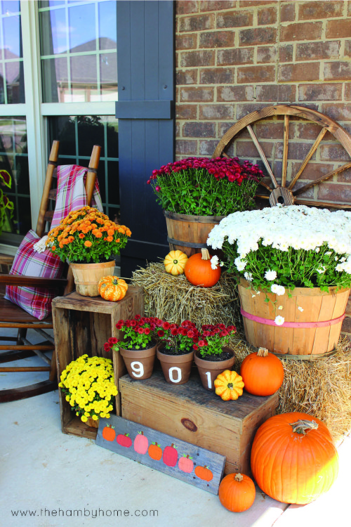 Simple fall door decor the hamby home for Simple fall front door decorations