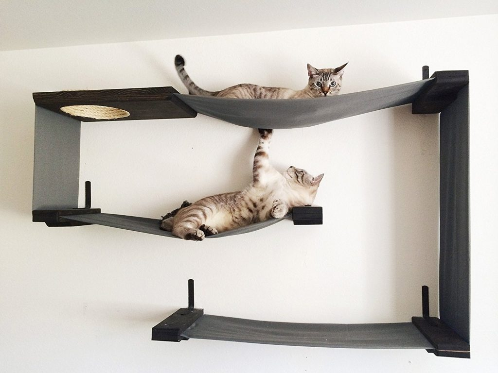 Indoor Cat Climbing Tree Helping You To Choose The Very Best Cat Tree With Hammock