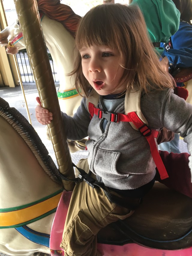 Fun on Dollywood's carousel! 9 Reasons to Visit Dollywood's Smoky Mountain Christmas: Review by The He Said She Said Experience