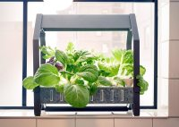 Indoor Garden Systems That Let Anyone Grow Plants - The ...