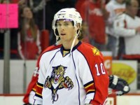David Booth is healthy after concussion shortened season (photo: aimee \ WikiCommons)