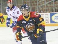 Dane Fox (ottershockey.com)