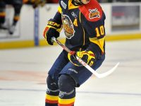Stephen Harper – The Next Ones: NHL 2013 Draft Prospect Profile