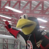 hockey mascot interview