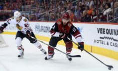 Coyotes' Loss to Chicago Identifies Areas Of Concern