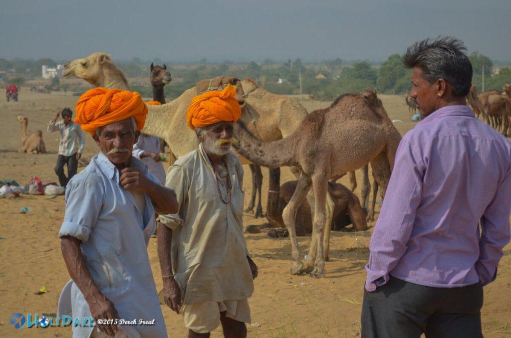 Camel herders at the Pushkar Camel Fair 2015
