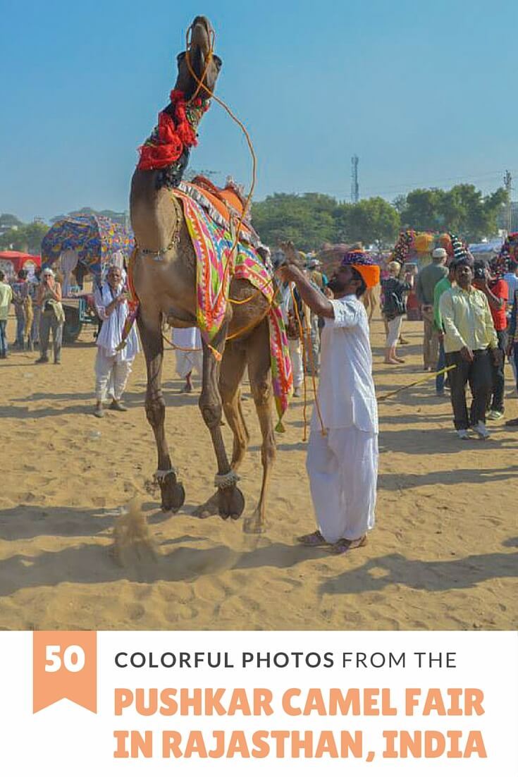 50 colorful photos from the Pushkar Camel Fair in Rajasthan, India