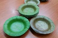 Leaf Dinnerware to Replace Plastic and Styrofoam ...