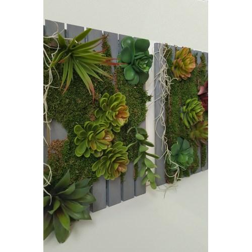 Medium Crop Of Succulent Hanging Garden