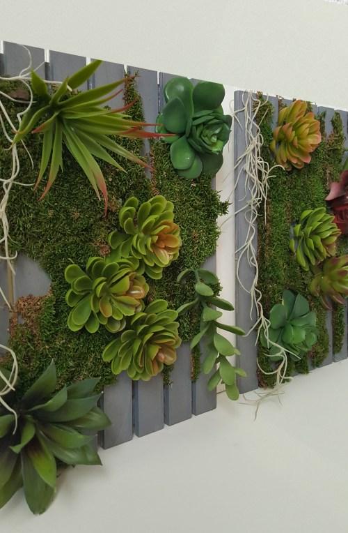 Medium Of Succulent Hanging Garden