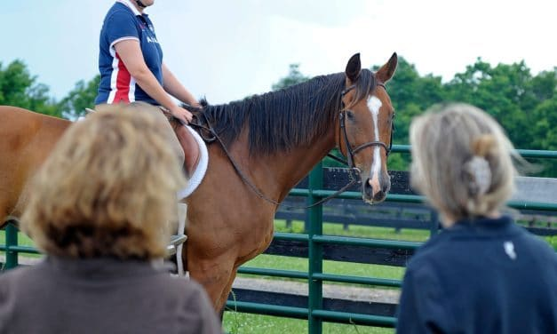 Jennifer A McCabe, JD, Author at The Horse - horse sales contracts