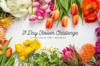 31 Day Flower Drawing Challenge
