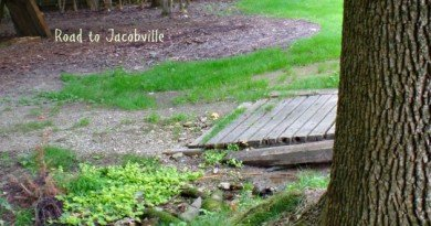Bridge to Jacobville