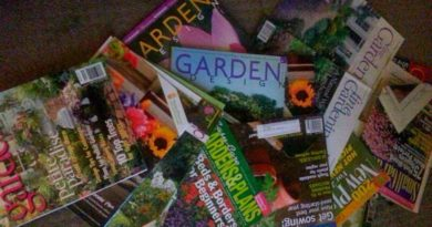 Hoarders-of-Garden-Magazines-The-Hypertufa-Gardener