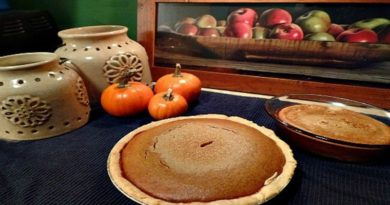 Almost from Scratch Homemade Pumpkin Pie
