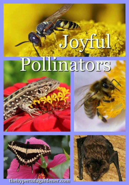 Joyful Pollinators
