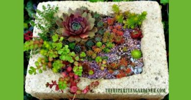 colorful-hypertufa-planters-make-one-yourself
