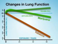 Marijuana stats higher than cigarettes for a change ...