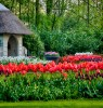 A Whole Lot Farther- The Netherlands – Keukenhof Gardens – Part 1