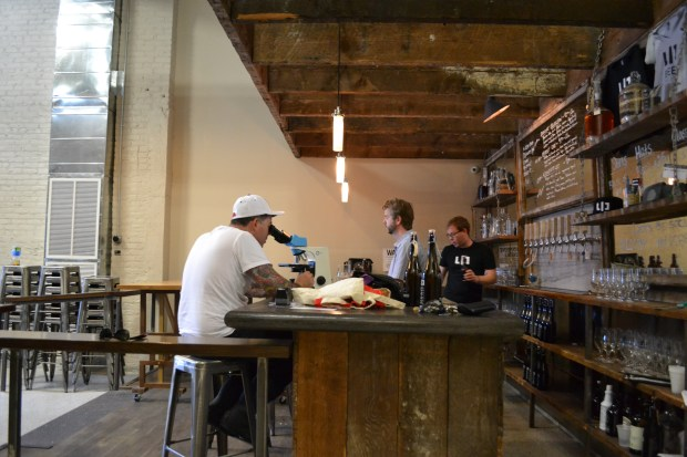 Acosta (left), Oscarson (middle) and the company's sales manager, Sam Speer, in LIC Beer Project's taproom. (Ariana Igneri  / The Ink)