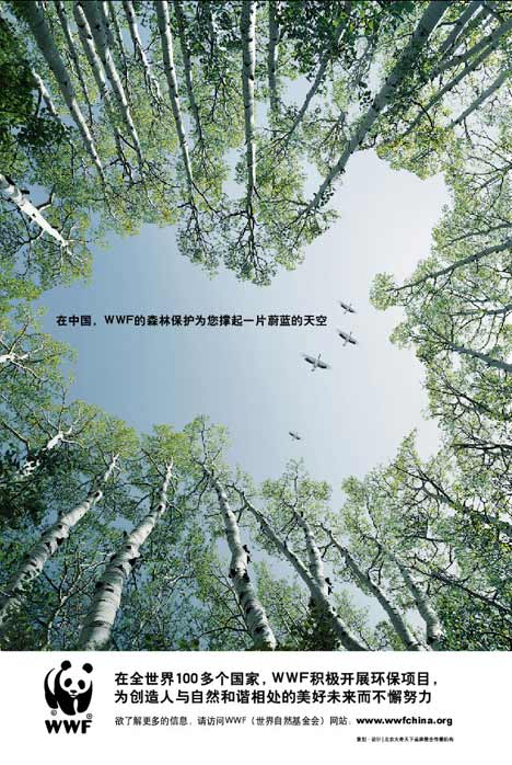 Birds in forest in WWF China print ad