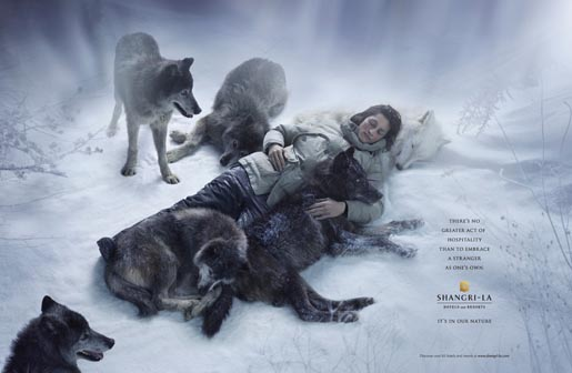 Shangri-La Wolves print advertisement