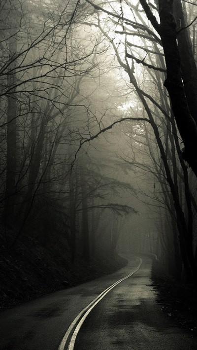 Dark Road Forest - The iPhone Wallpapers
