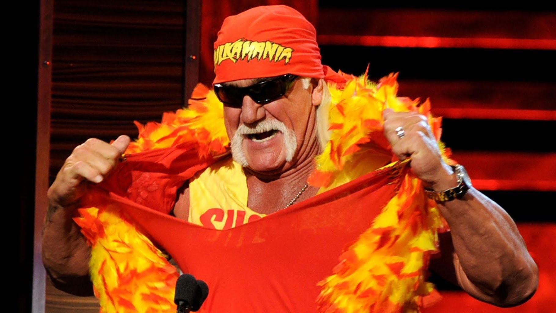 Wwe Hulk Hogan Wwe The Irish Whip