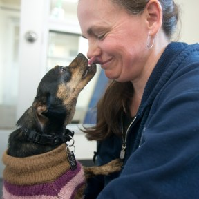 SPCA staff member Katie Deis, of Lansing, cuddles with Darla at the SPCA on Jan. 19.
