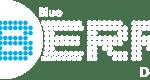 blue-berri-logo