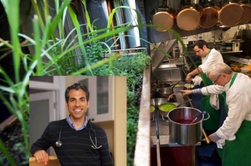 Bouley-Botanicals-Dr. Pedre
