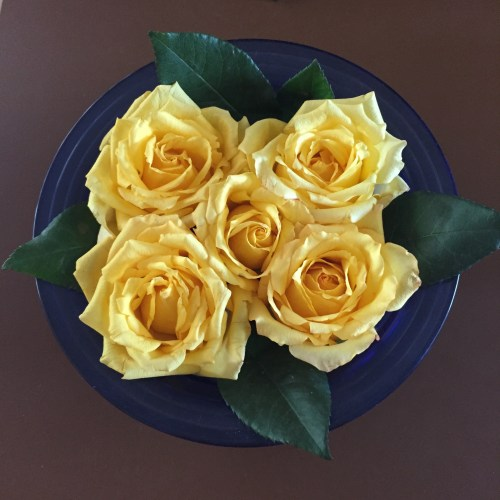 art-home-lunch-flowers