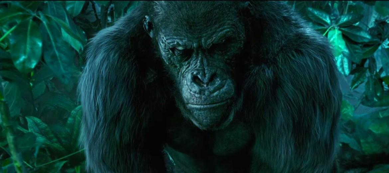 Legend of tarzan dialogue confirmed they aren t gorillas they re mangani the tarzan files - Tarzan gorille ...