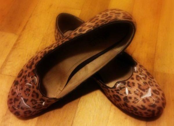 roarbrownleopard