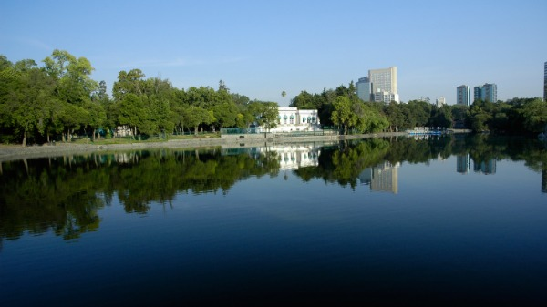 Hyatt Regency Mexico City View from Chapultepec Park