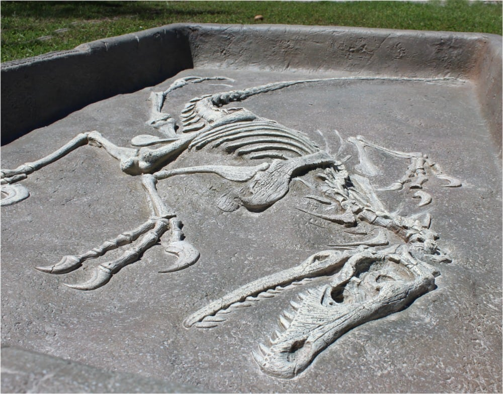 Dinosaur Sand Box Future Archaeologist Bones To Dig
