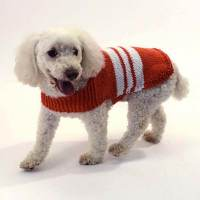 Knit Collegiate Dog Sweater [FREE Knitting Pattern]