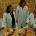 Studying Traditional Chinese Medicine at PCU College. - Photo courtesy of  PSU College